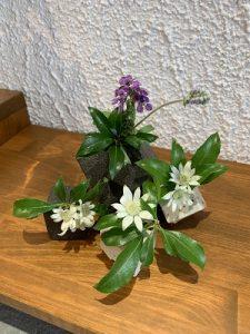 2019.8 夏のかかや 花器2 陶器ディスプレー かかや春日部